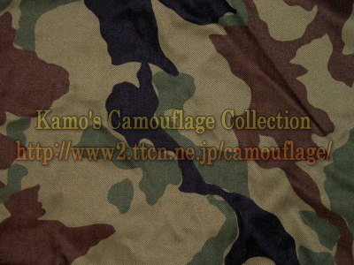 """Japan """"Opposite forces"""" camouflage  Jasdf_camo"""