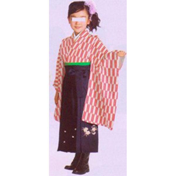 卒園式袴|赤矢絣|紫刺繍袴767h